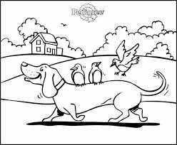 Kleurplaten Sinterklaas Lijstje.Hond Kleurplaat 1000 Gratis Kleurplaatsen In Alle Vormen En Maten