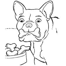 hond17