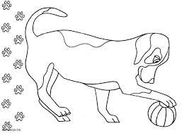 hond45
