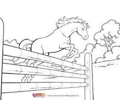 Kleurplaten Paarden En Dolfijnen.Paarden Kleurplaat 1000 Gratis Kleurplaatsen In Alle Vormen En Maten