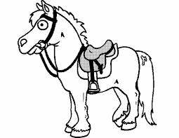 Paard113