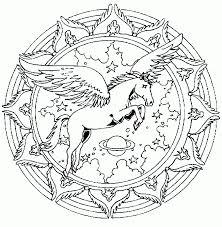 Paard123