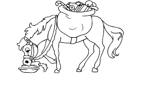 Paard17