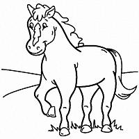 Paard35