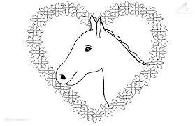 Paard47