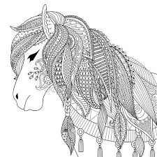 Paard59
