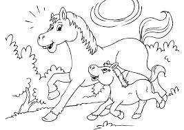 Paard63