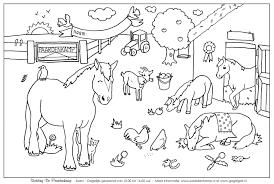 Paard65