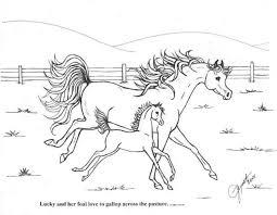 Paard67