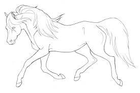 Paard77