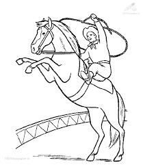 Paard81
