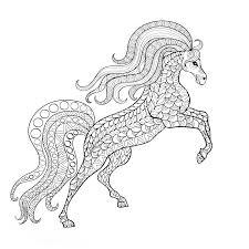 Paard83