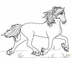 Paard85