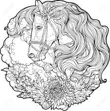 Paard93