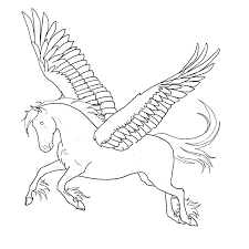 Paard97