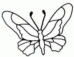 vlinder20