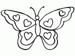 vlinder24