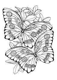 vlinder28