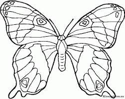 vlinder34