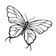 vlinder35