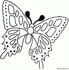 vlinder36