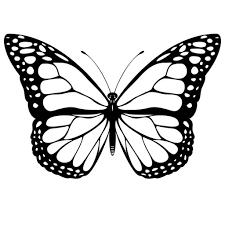 vlinder38