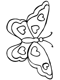 vlinder40