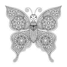 vlinder41