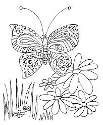 vlinder44