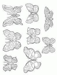 vlinder47