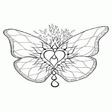 vlinder50