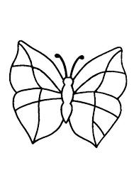 vlinder53