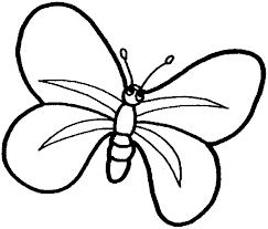 vlinder58