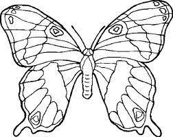 vlinder59