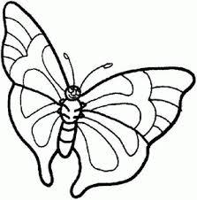 vlinder66