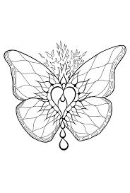 vlinder7