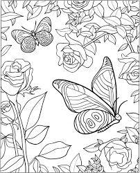 vlinder70