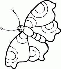 vlinder72
