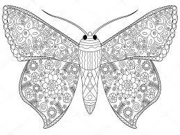 vlinder75