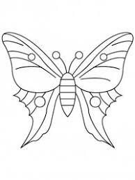 vlinder78