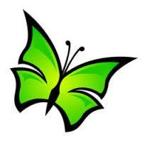 vlinder92