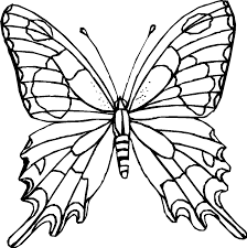 vlinder96