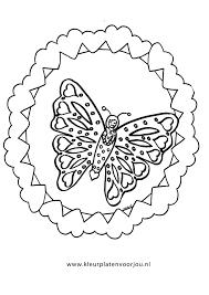 vlinder97