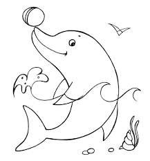 dolfijn27