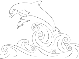dolfijn44