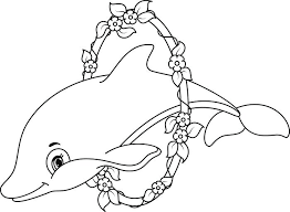 dolfijn5