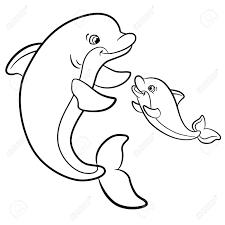 dolfijn57