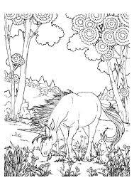 eenhoorn14