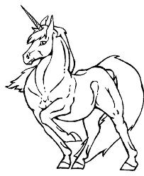 eenhoorn96
