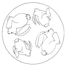 konijn16